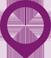pointer-purple